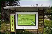 97.04.05(1)大屯花卉農場:nEO_IMG_IMGP7503.jpg
