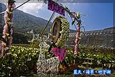 97.03.27藍天‧海芋‧竹子湖:nEO_IMG_IMGP7046.jpg