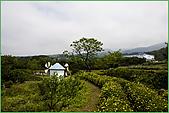 97.04.05(1)大屯花卉農場:nEO_IMG_IMGP7522.jpg