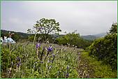 97.04.05(1)大屯花卉農場:nEO_IMG_IMGP7524.jpg