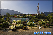 97.03.27藍天‧海芋‧竹子湖:nEO_IMG_IMGP7143.jpg