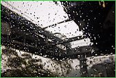 97.03.19貓空纜車&杏花林:nEO_IMG_IMGP6744.jpg