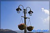 97.03.27藍天‧海芋‧竹子湖:nEO_IMG_IMGP7072.jpg