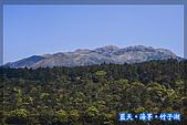 97.03.27藍天‧海芋‧竹子湖:nEO_IMG_IMGP7081.jpg