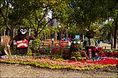 97.12.27大安森林公園2009台北花卉展:IMG007.jpg