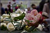 2009士林官邸玫瑰季:nEO_IMG_IMGP5519.jpg