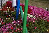 97.12.27大安森林公園2009台北花卉展:IMG011.jpg