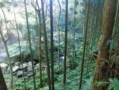 向天湖山.光天高山:向天湖.光天高山 (20).JPG
