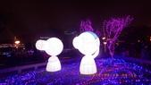 2015_FEB_ 冷春正陽禾風近:28FEB2015_台北金喜羊燈節 (25).JPG