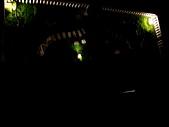 蘭嶼飛魚故鄉2008:飛魚蘭嶼東台盛夏2008 073.jpg
