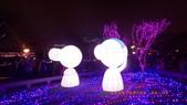 2015_FEB_ 冷春正陽禾風近:28FEB2015_台北金喜羊燈節 (24).JPG
