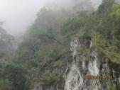 南橫東段風光/台東鹿野溪鹿鳴橋與紅葉溫泉:IMG_4731.JPG