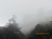 南橫東段風光/台東鹿野溪鹿鳴橋與紅葉溫泉:IMG_4732.JPG