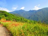 185線道沿山公路景點與沙溪林道專訪:IMG_0717.JPG