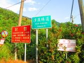 185線道沿山公路景點與沙溪林道專訪:IMG_0797.JPG