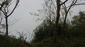 梅嶺/獵鷹尖與一線天的終極目標/參訪曾文水庫:01042013930.JPG