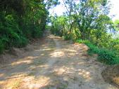 185線道沿山公路景點與沙溪林道專訪:IMG_0736.JPG