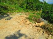 185線道沿山公路景點與沙溪林道專訪:IMG_0755.JPG