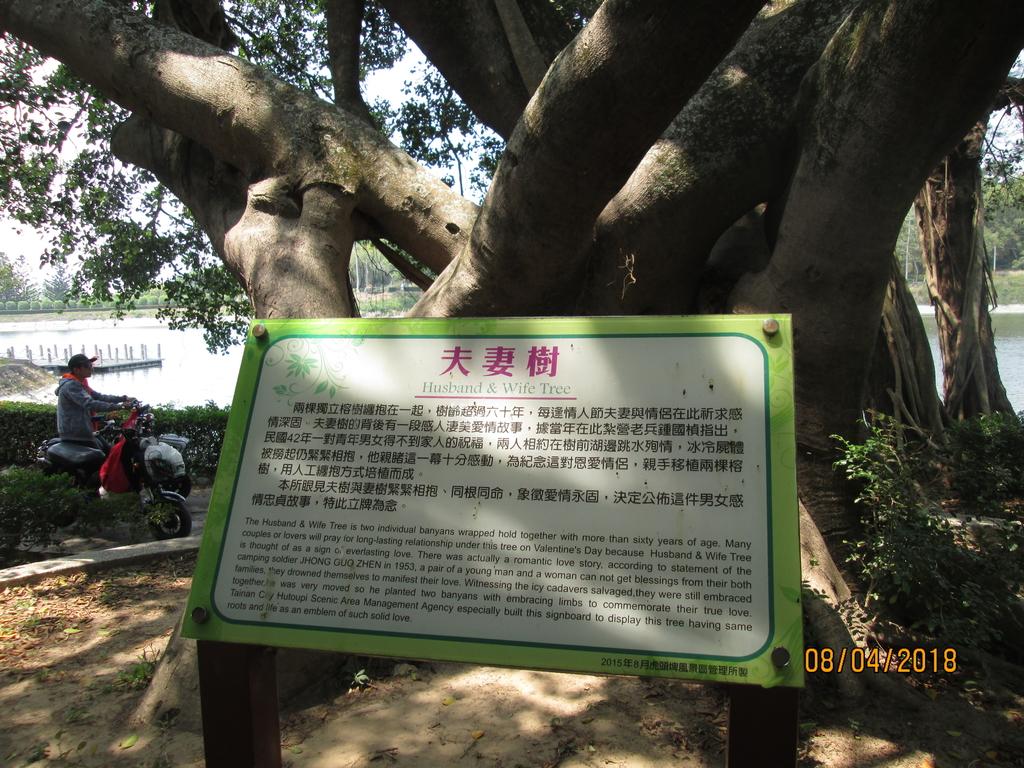 虎頭埤風景區:IMG_2894 (1).JPG