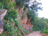 185線道沿山公路景點與沙溪林道專訪:IMG_0793.JPG