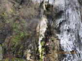 南橫東段風光/台東鹿野溪鹿鳴橋與紅葉溫泉:IMG_4726.JPG