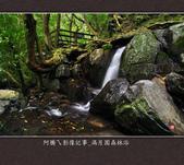 2013.03.23_滿月園森林浴:2013.03.23_滿月園森林浴-0017.jpg
