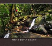 2013.03.23_滿月園森林浴:2013.03.23_滿月園森林浴-0018.jpg