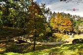 2014.12.09_溪州公園:2014.12.09_溪州公園0012.JPG