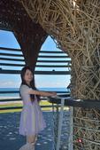 2014.08.22_環島Day-6-台東鳥巢:2014.08.22_環島Day6-台東-鳥巢0027.jpg