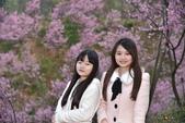 2015.02.19_熊空櫻花林外拍-合照:2015.02.19_熊空櫻花林外拍0006.jpg