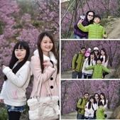 2015.02.19_熊空櫻花林外拍-合照:相簿封面