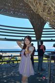 2014.08.22_環島Day-6-台東鳥巢:2014.08.22_環島Day6-台東-鳥巢0029.jpg