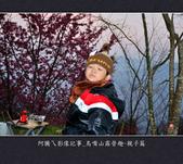 2013.01.20_鳥嘴山露營趣-親子篇:2013.01.20_鳥嘴山露營趣-親子篇-0020.jpg