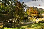 2014.12.09_溪州公園:2014.12.09_溪州公園0013.JPG