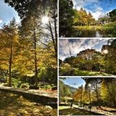 2014.12.09_溪州公園:相簿封面