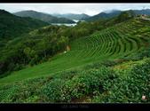 2013.11.12_石碇千島湖:2013.11.12石碇千島湖-0004.jpg
