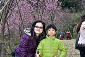 2015.02.19_熊空櫻花林外拍-合照:2015.02.19_熊空櫻花林外拍0003.jpg