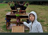 2013.10.23_新屋小鴨地景:2013.10.23_新屋小鴨地景-0008.jpg