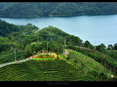 2013.11.12_石碇千島湖:2013.11.12石碇千島湖-0017.jpg