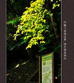 2013.03.23_滿月園森林浴:2013.03.23_滿月園森林浴-0001.jpg