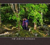 2013.03.23_滿月園森林浴:2013.03.23_滿月園森林浴-0003.jpg