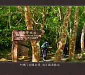 2013.03.23_滿月園森林浴:2013.03.23_滿月園森林浴-0004.jpg