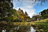 2014.12.09_溪州公園:2014.12.09_溪州公園0002.JPG