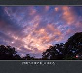 2013.02.02_大溪夜色:2013.02.02_大溪夜色-0006.jpg
