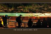 2013.03.16_悠遊阿里山-夜櫻車軌篇:2013.03.16_阿里山-夜櫻車軌篇0011.jpg