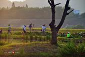 2014.09.03_濕地之晨:2014.09.03_大溪濕地之晨0014.jpg