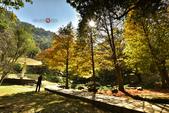 2014.12.09_溪州公園:2014.12.09_溪州公園0014.JPG
