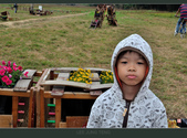 2013.10.23_新屋小鴨地景:2013.10.23_新屋小鴨地景-0005.jpg
