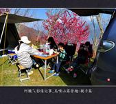 2013.01.20_鳥嘴山露營趣-親子篇:2013.01.20_鳥嘴山露營趣-親子篇-0004.jpg