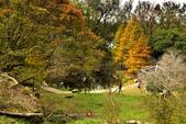 2014.12.09_溪州公園:2014.12.09_溪州公園0009.JPG